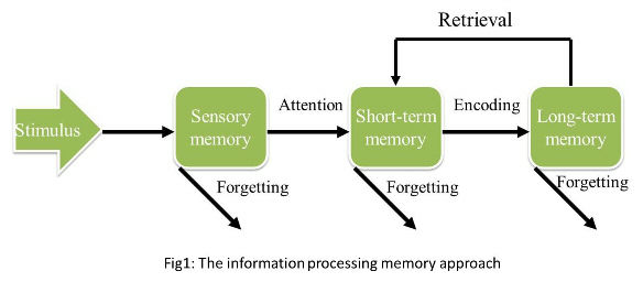 Use this as root and you can get a clear output for memory usage by each process.