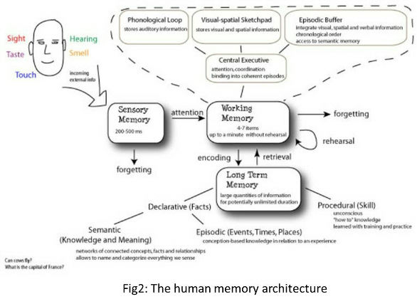 Memory relies on simultaneously available timescales